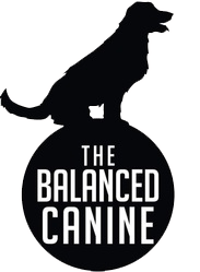 The Balanced Canine - Midlothian TX
